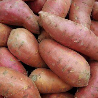 Bataty - słodkie ziemniaki